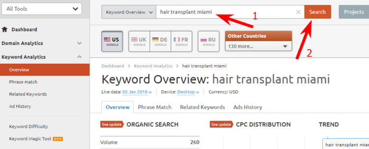 Example of report for hair transplant miami