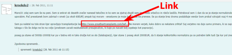 Link on forum example