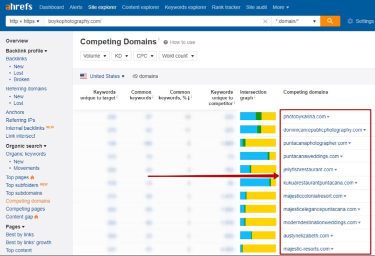 Searching for Competitors In Ahrefs